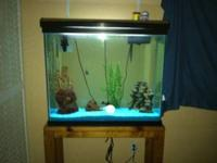 IM SELLING MY 40 GALLON FISH TANK AND STAND FOR $160