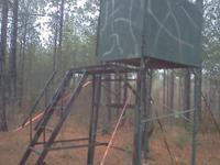 I will custom build a deer stand to fit your needs.