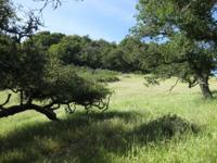 ONE OF A KIND 45+ ACRES ONLY MINUTES BEHIND CAYUCOS.