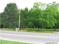 APPROXIMATELY 1000 FT OF ROAD FRONTAGE ON HWY 431 AND