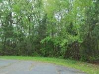 .47 ACRE WOODED HOUSE LOT ON PAVED ROAD .ASKING