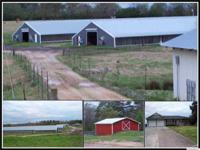 4 House Broiler Farm, 3 Bedroom, 2 Bath, 2700sqft home,