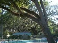 1 br, 1706 Art Museum Dr, Jacksonville, FL Description