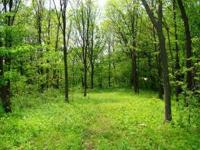 This southern WI home site property for sale sits at