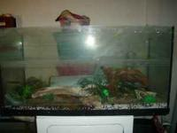 Hello! I have two aquariums for sale the first is 6ft