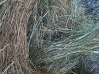 4x5 round bales for sale good grass hay no dust. Call