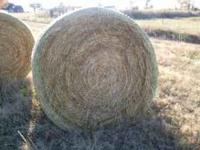 4x5 net wrapped bales of rice grass hay, 800 to 900lb