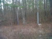 Beautiful mountain land in Mill Run Sub Division with a