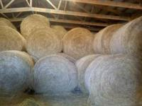 We have 5' by 5.5' round bales for sale for $50.00 a