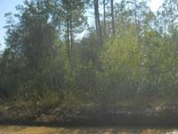 5 acres on Foster Rd in Fountain, FL. Home is wooded