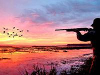 If you enjoy duck hunting, why not rent your own
