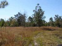 ONE ACRE PLUS LOTS AVAILABLE. Located off of Baker