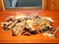 i have a 5000 soft plastics worms,lizards,grubs and