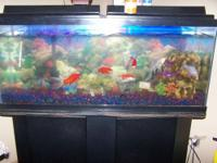 I have a 55 Gallon fish tank for sale it comes with