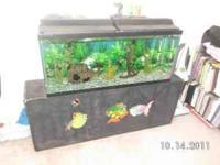 55 gallon fish tank aquarium complete with rocks,