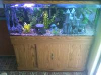 I have a 55 gallon glass tank that holds water (has