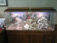 This is a very nice 55 gal fish tank with the heater