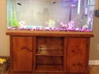 Hey! I have a 55 gal fish tank with stand for sale. It