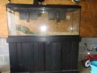 55 Gallon fish tank with stand. Includes 2 Emperor 400