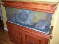 55 Gallon Fish Tank for immediate sale. It has a