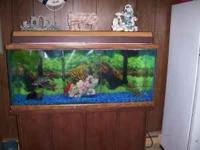 """55 gallon fish tank Tank 48"""" W x 21"""" H x 13"""" D Tank"""