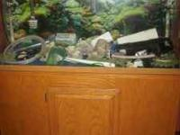 I have a 55 gallon fish tank,custom oak stand,2- 550