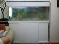 I am selling my 55 gallon fish tank with pump, heater,