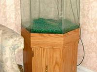 I have a 55 Gallon Fish Tank it comes with Fish and