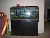 55-Gallon fish tank with wood stand painted black. Two