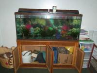 55 gallon fish tank with cabinet, a few fish, and lots