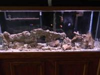 I have a 55 Gallon Salt Water Fish Tank.. The tank come