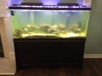 55 gallon aquarium, total with stand, LED lights, glass