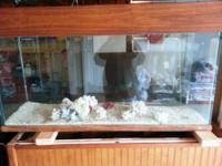 55 Gallon Tall Saltwater aquarium for sale. Custom