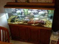 I have 55 gals fishtank with nice wooding stand , 2