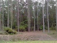 A gorgeous 1.1 acre lot on paved road out in the
