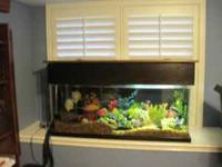 I have 55 gal fish tank complete with everything you
