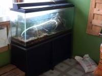 We are selling our 55 gallon Aquarium with stand and