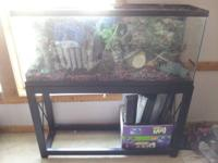 55 gallon fish tank, stand, heater, filter system, air