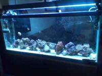 THIS IS A COMPLETE SALTWATER TANK 55 GALLONS COMES WITH
