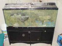 55G FISH TANK AND STAND FANCY FILTER AND HEATER SYSTEM