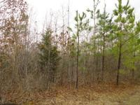 Nice secluded vacation or hunting getaway. This parcel