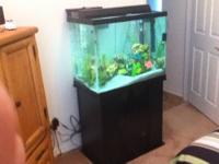 For sale is a 56 gallon aquarium. Everything is