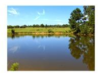 See this stunning pastureland (all fenced but 1 side),