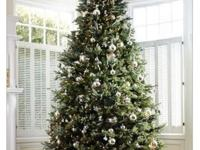 6.5 Balsam Fraser Fir Only 4 years old. LIKE NEW. from