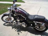 For sale 2005 Harley Davidson Sportster 1200XL Custom.