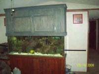 For sale: 150 gallon fish tank, stand , and lights.