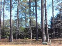 Six (6) Club Pointe lots for sale in Gatewood