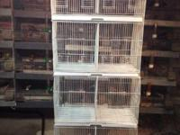 I'm marketing 6 brand new Bird cages. The cages possess