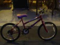 Murray mountain climber Girl's six-speed bike 20 inch