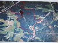 Unbelievable 600 ac hunting lease in Grayson Co.,